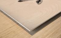 AdriaanPrinsloo 20089 Wood print