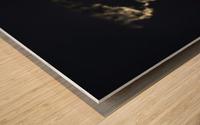 Dark Continent Heron Wood print