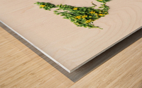 Light Continent Ciriel Wood print