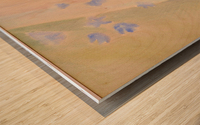 DSC_0995 Wood print