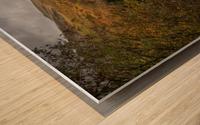Elan valley landscape Wood print