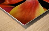 Tulip 2 Wood print