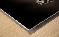 Medioluto norteA±a Wood print