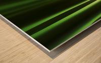 Green Frog Wood print