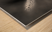 Epine Wood print