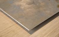 The Haagse Veer, Rotterdam Wood print