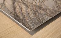 Plumeau Wood print