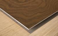 Patterns Of Nature ap 2120 Wood print