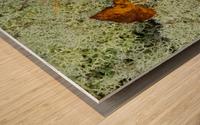 Leaves  N  Lichen ap 1553 Wood print