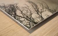 Pasture ap 2033 Wood print