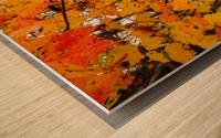 Maple Leaves ap 1589 Wood print