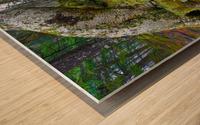 Moss   Lichen ap 2196 Wood print
