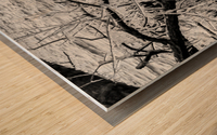 Splash Icicles ap 2147 B&W Wood print