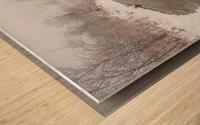 Snow Storm ap 2710 Wood print