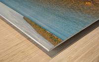 Driftwood ap 2481 Wood print