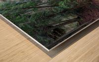 Water Colors apmi 1636 Wood print
