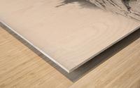 Lichen and Granite ap 2340 B&W Wood print