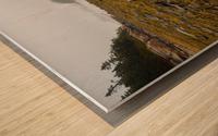 Low Tide ap 2271 Wood print