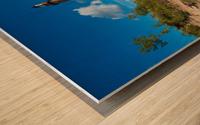 Little Sable ap 2442 Wood print