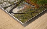 Maple Tree apmi 1919 Wood print
