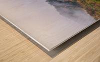 Seneca North apmi 1878 Impression sur bois