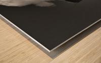 SMOKESTACK NUMBER TEN Wood print