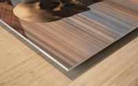 Sapiens Wood print