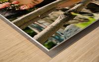 NO SECRET BETWEEN US  collection 2-4 Wood print
