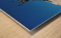 C19CE809 D88F 43E6 8A46 7F33E6E925A4 Wood print