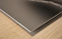 24810937 454A 4C55 B80D 39BE65C2F639 Wood print