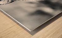 Fierce  Wood print