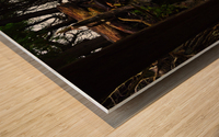 Enchanted Embankment Wood print