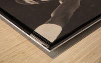 Michael Cooper and Larry Bird Film Strip Wood print