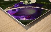 Deep Purple Wood print