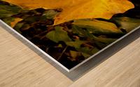 BEF07FDB 2FCF 424A 8A1F 5DBA1711F3B9 Wood print