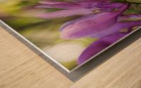 Confettis de Lady Suzanne Impression sur bois