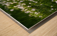Confettis au jardin 3 Wood print