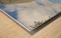 Sunny Day in Zurich Wood print