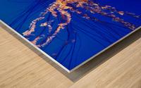 Monterey Jellyfish Wood print