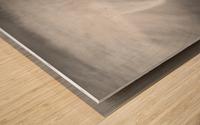 190925 LR66 Panchro400 011A Wood print