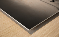 191210 LR66 Ortho 001A Wood print