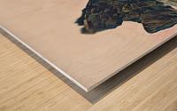 Ruby Beach Wood print