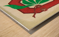 1973 Ohio State Buckeyes Retro Art | Row 1 Wood print