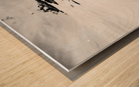 B&W Silky  Wood print