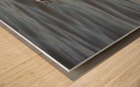 Ring-billed Gull Wood print