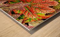 Oak Leaved Hydrangea In Autumn Wood print