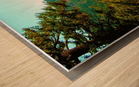 LS027 Wood print