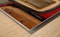 Old Radio Used For Succulent Display Wood print