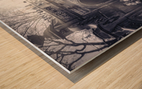 Bethesda Man2 Wood print
