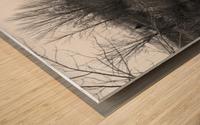 Frozen Wetlands Wood print